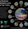 This infographic shows catastrophic wilderness loss since the 1990s.